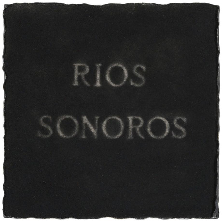 Rios sonoros by Pier Paolo Calzolari