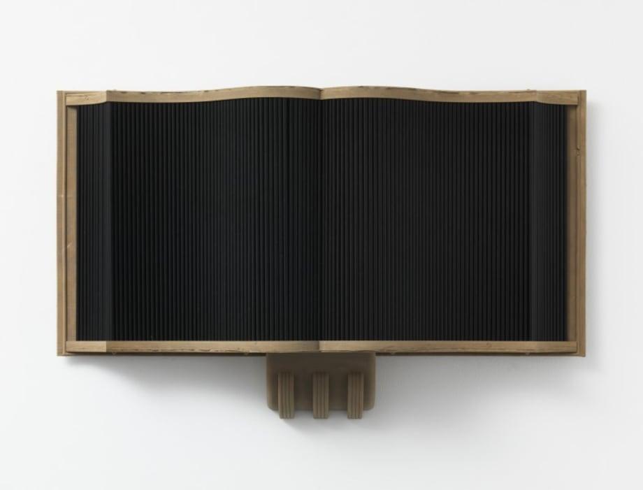 Stranded Asset by Sam Lewitt