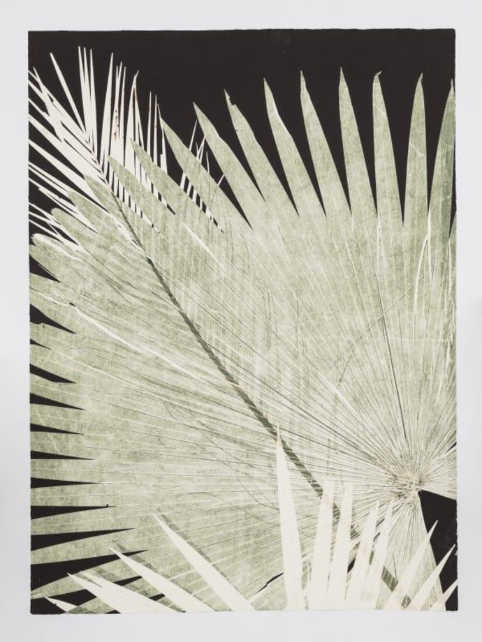 Corifa Tropical by Luiz Zerbini