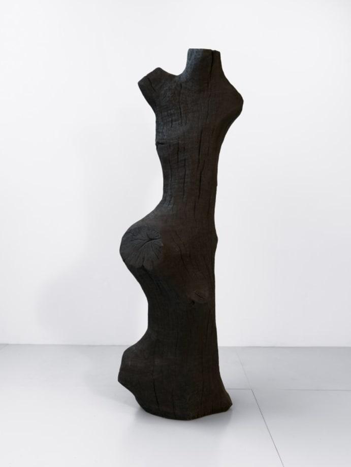 Tall Torso by David Nash