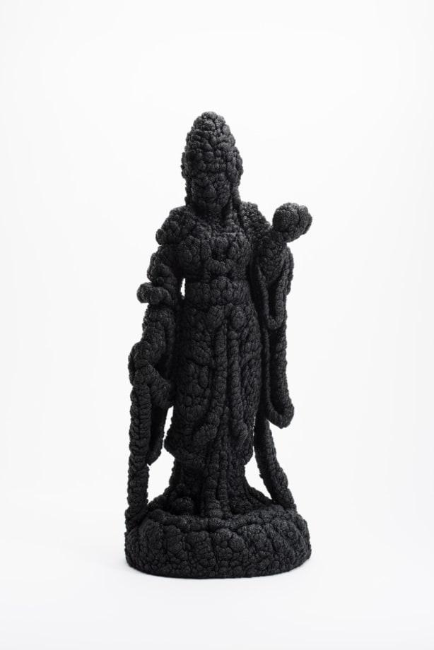 Villus-Kannon(Black) by Kohei Nawa
