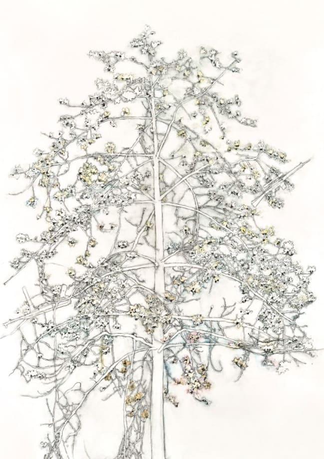 Hero Tree by Bouie Yuk Kuen CHOI