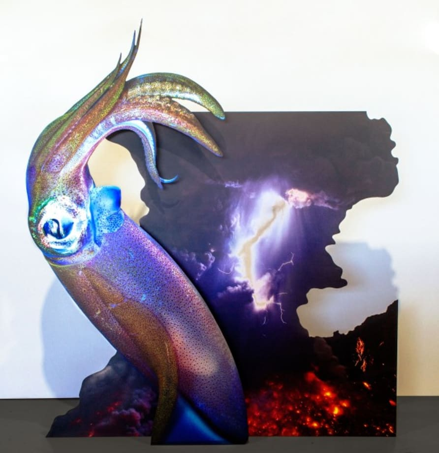 Squid Trajectory (volcano) by Katja Novitskova
