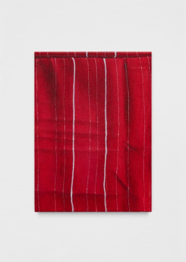 Red Pillow Cover by Gheorghe Ilea